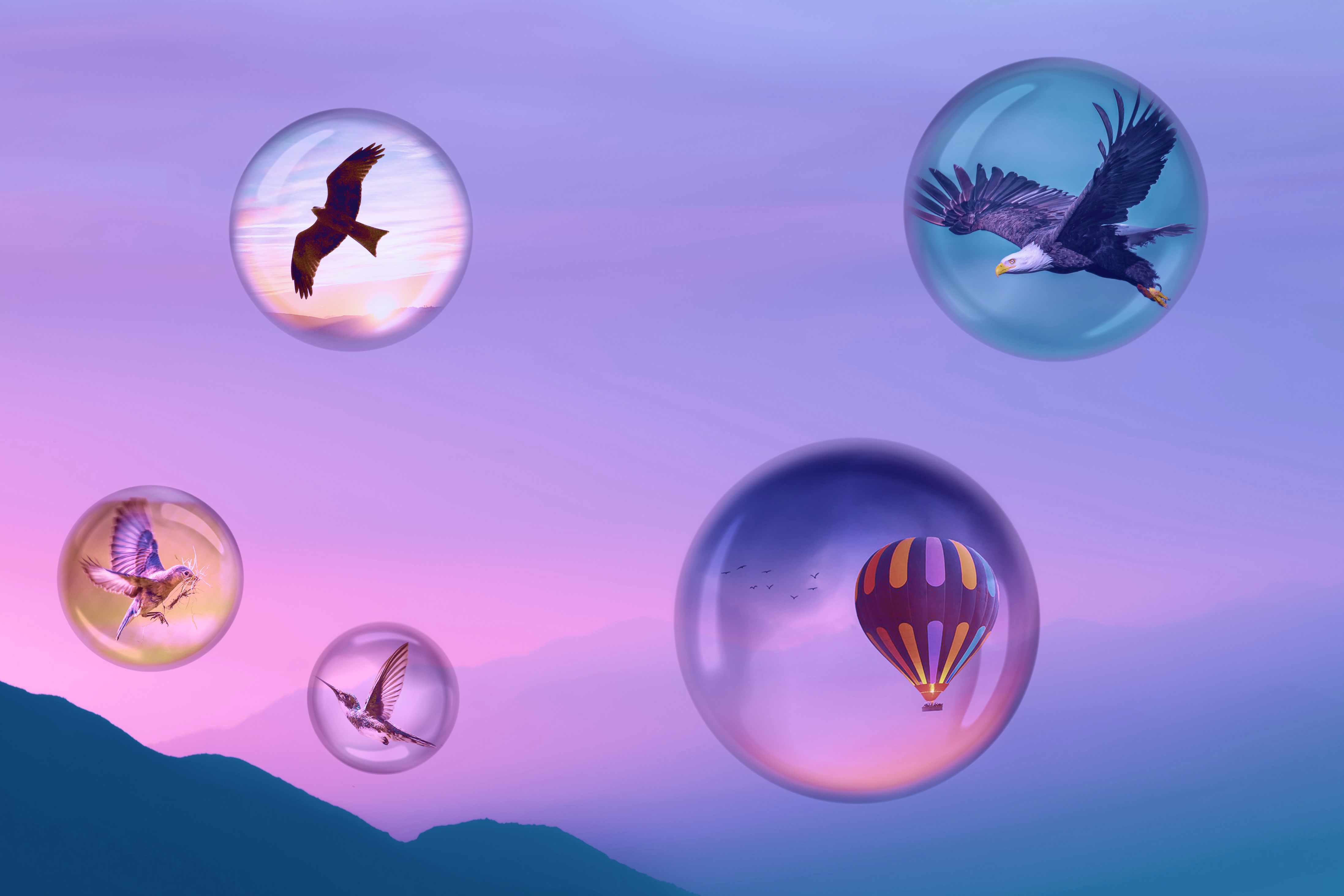 Floating Birds